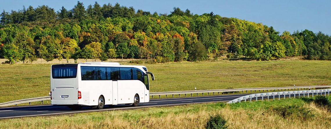 bus-tour-groups-main