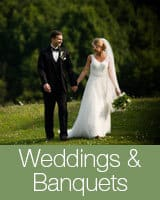 weddings-banquets-nav-new-color